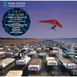 A Momentary Lapse of Reason (Remixed & Updated) 2LP